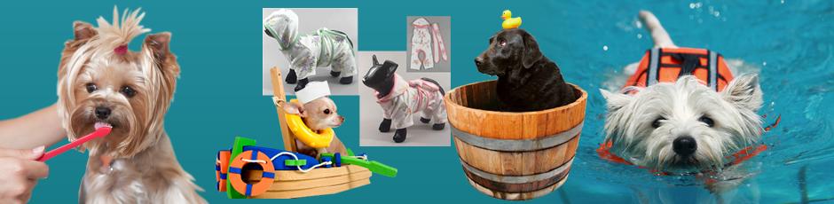 Walkies Pet Supplies Banner2