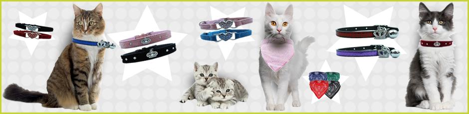 Walkies Pet Supplies Banner5